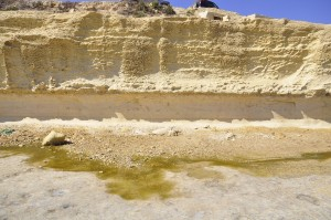 Benches in the Globigerina limestone, that highlight how periods with calm deposition have left light limestone with litte bioturbation, interrupted by low-stands with heavy treatment by the slimy creatures.