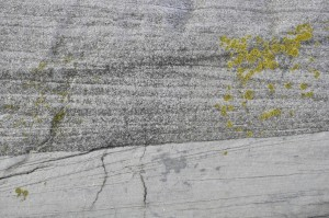Fine grained crossbeds from a flow going leftwards, eroded by more coarse crossbeds going rightwards. May be the sediment source was to the left, explaining why the upper ones are coarser.