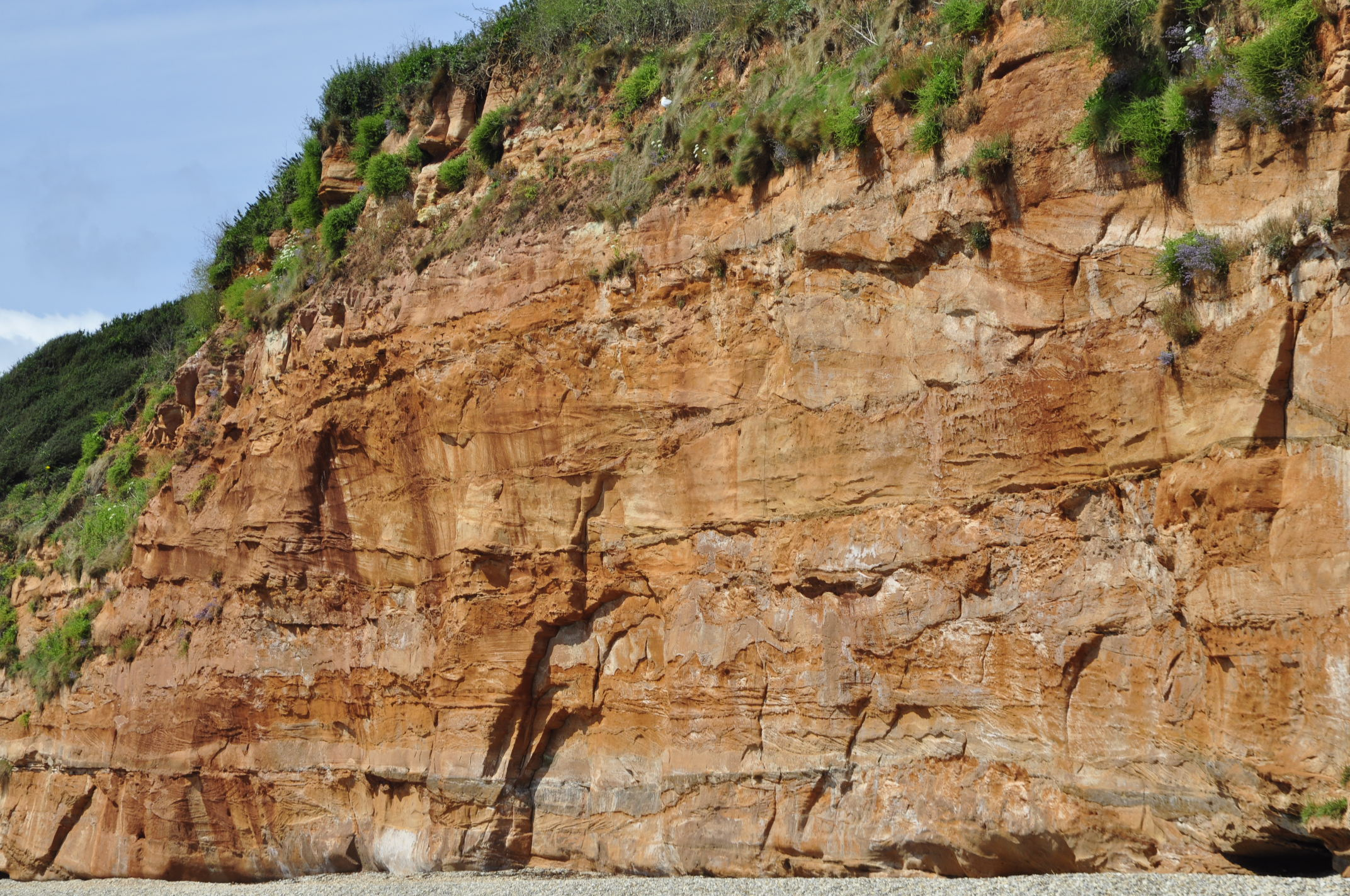 Crossbedded sandstone With shale layers in between, in Ladram Bay.