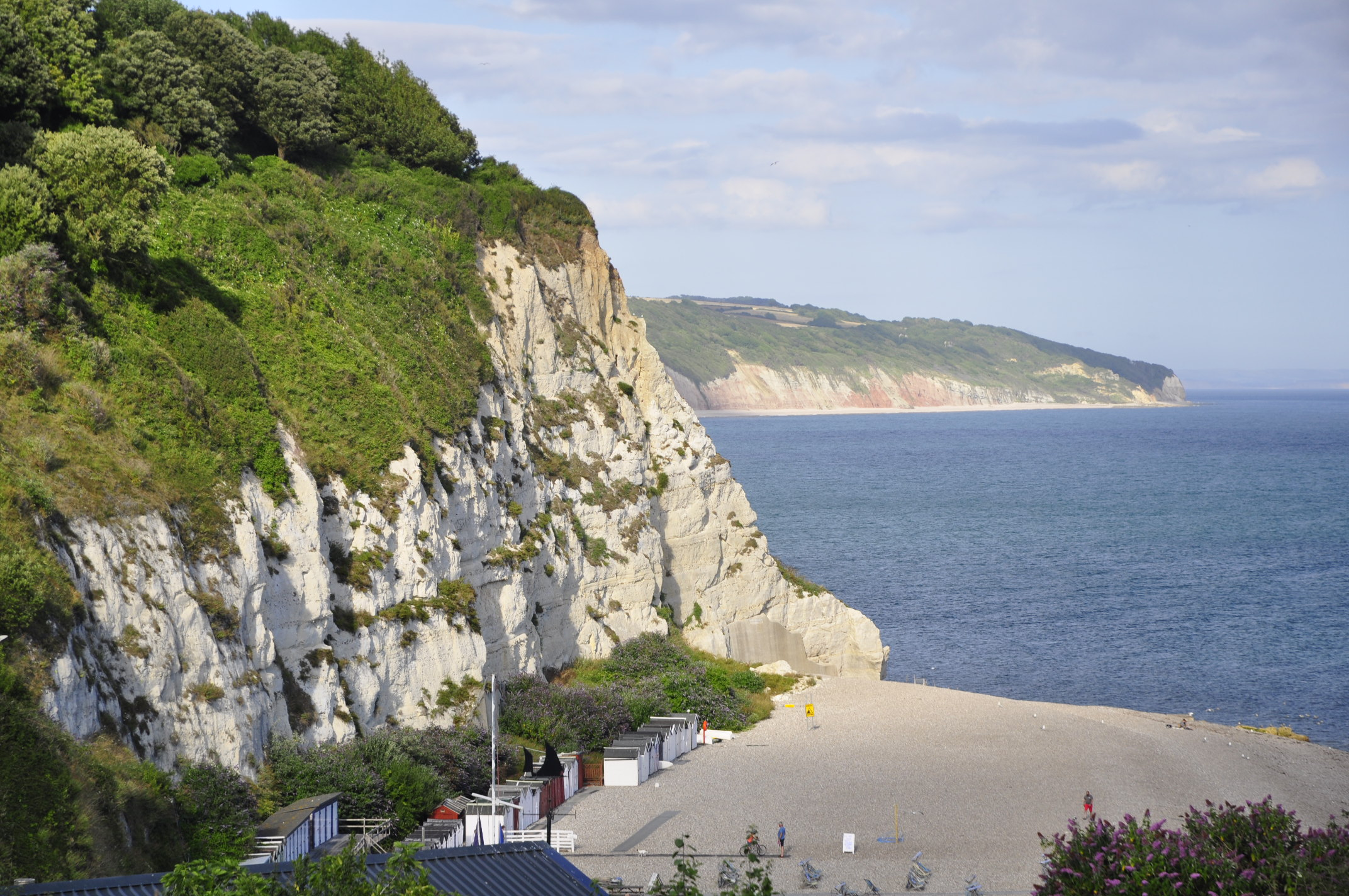 The white cliffs of Beer, with the flint-pebble beach in front. In the background are the reddish Triassic sandstone near Seaton. In geo-speak; Beer is in the downthrown side, the hangingwall of a large fault, while the Triassic is in the footwall.