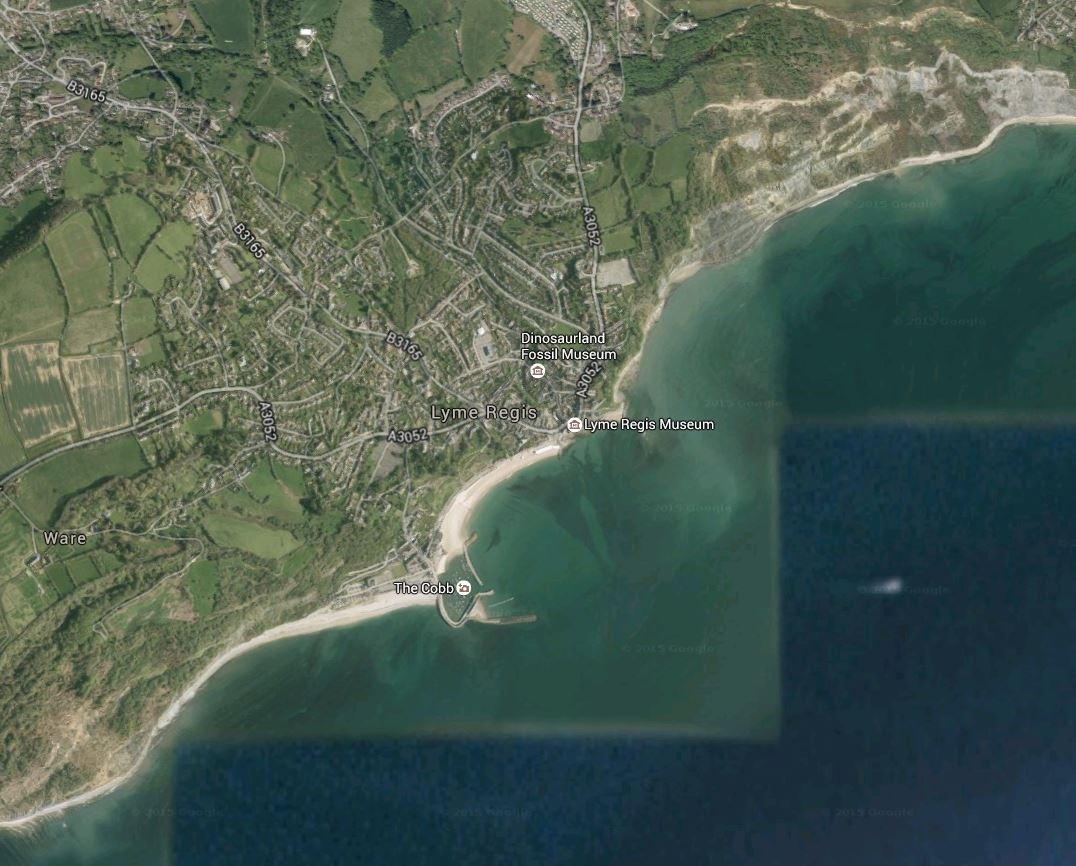 Lyme Regis from above, with the beaches to the west and east. The best collecting sites are on the beach in the Southwest corner, home of the big ammonites, and at the Black Ven at upper right. Note the fault scarps in the cliffs inland from the Black Ven!