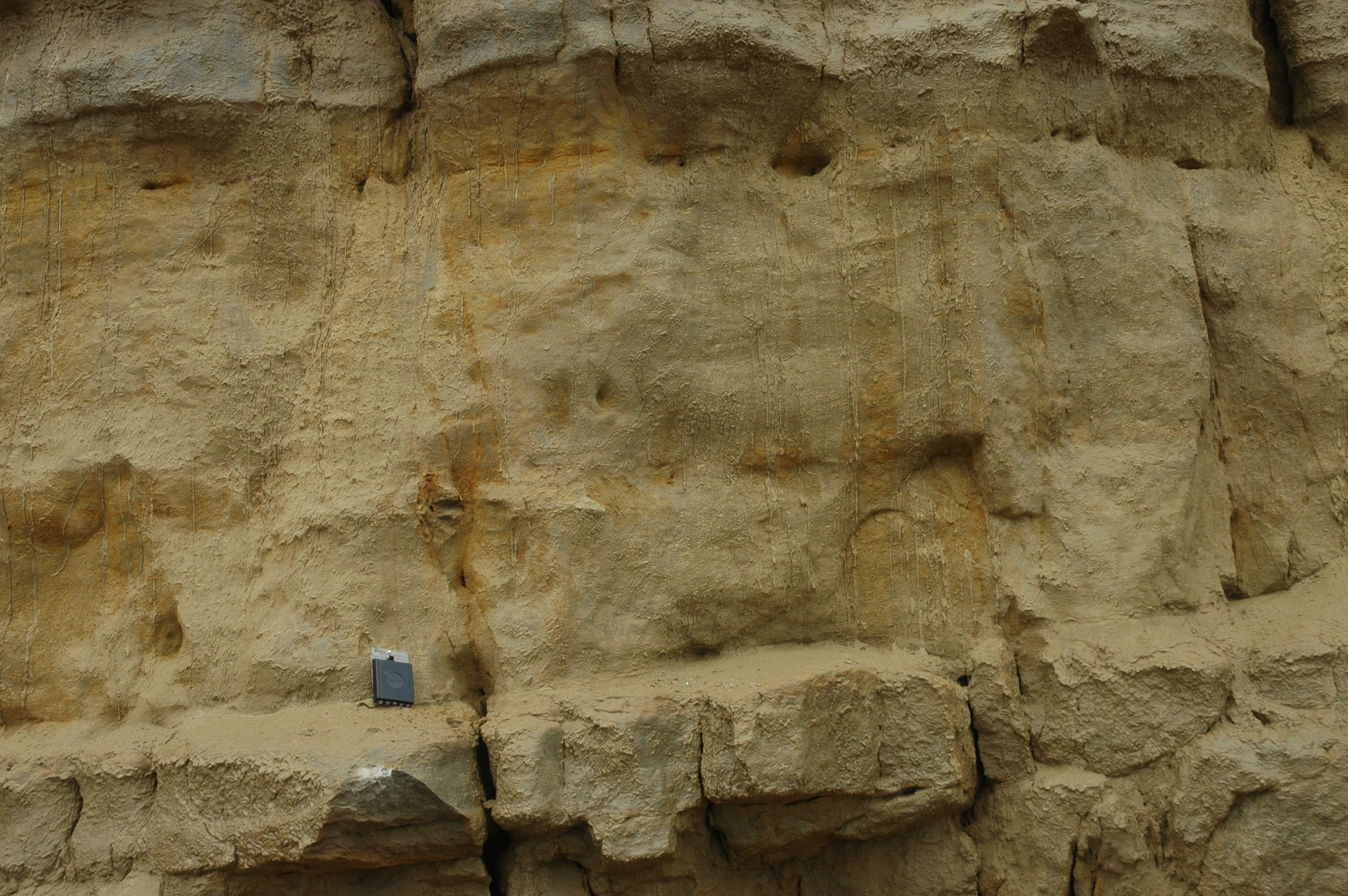 Close-up of the bridport Sands at West bay: Note how the changes between hard and soft are due to the almost invisible cement, not a change in rock type.